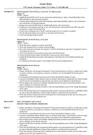 What Is A Functional Resume Sample Peoplesoft Functional Resume Samples Velvet Jobs 4