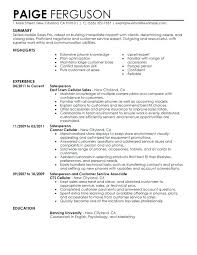 Great Sales Resumes Fancy Cosmetics Sales Resume On Resume Template ...