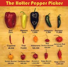 Chilli Hotness Chart Oops Food Too Spicy Heres How To Fix It Food Hacks
