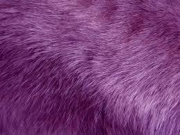 Free Photos Fur Texture Background Purple Search Download Needpix Com