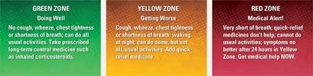 Asthma Zone Chart Asthma Action Plan Zones Usdchfchart Com
