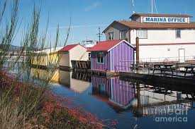 Colourful Harbour Photograph by Wendy Elliott