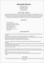 Product Owner Resume Template Small Business Owner Resume Examples