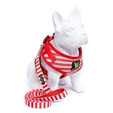 Ecobark Dog Harness And Leash Combo X Large