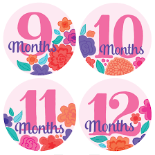 12 month pink flowers monthly baby stickers months 1 12