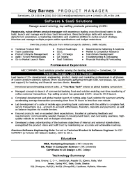 Here Are It Manager Resume Template Project Senior Example Office