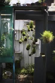 Small Picture Garden Design Garden Design with tiny apartment patio gardens