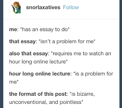 tumblr posts you ll funny if you ve ever written an essay when you know you could write the essay in your sleep but there are other requirements that you re just not down for