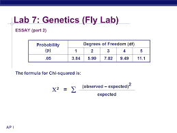 ap biology lab genetics fly lab ap biology lab genetics  6 ap biology lab 7 genetics fly lab essay part 2 the formula for chi squared is probability p degrees of dom df 12345 053 845 997 829 4911 1
