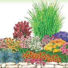Small Picture Perfect Garden Design Zone 5 Designs For Sun R Intended Decor