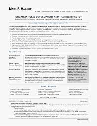 Executive Summary Resume Examples Delectable Executive Summary Sample For Resume Download Organizational