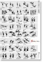 Weight Exercise Chart Free Weight Training Instruction Weight Lifting Max Weight