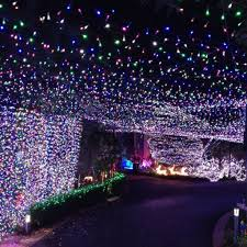 image of led outdoor string lights small