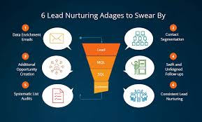 Lead Nurturing 6 Lead Nurturing Adages To Swear By Grazitti Interactive
