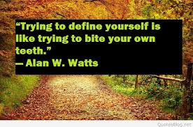 Define Quote Stunning Define Yourself Quote