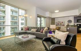 astonishing apartment living room ideas photos and pictures