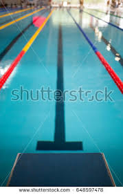 Starting Line Indoor Swimming Pool Olympic Stock Photo 648597478