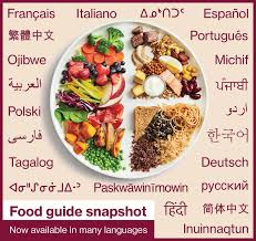 The Canadian Food Guide Chart Canadas Food Guide