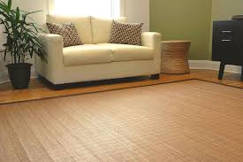 bamboo area rug home interiors excellent rugs also are from for the special living room 6x9 bamboo area rug
