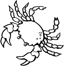 Small Picture Crab Coloring Page for Kids Free Printable Picture