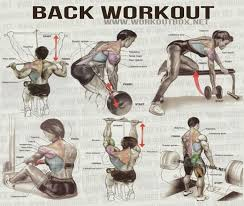 Back Workout Chart Step By Step Manny Kirby Theironcoalitio On Pinterest
