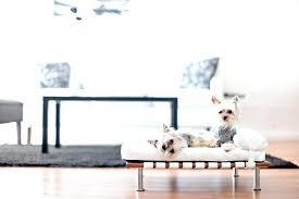 modern dog furniture. Mid Century Modern Dog Bed Furniture Cute Beds Pet Enchanted Home L
