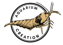 The Neocaridina Tree Aka Cherry Shrimp Aquarium Creation