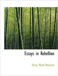 college essays college application essays   essay on rebellion cause amp effect essay rebellious behavior in teenagers