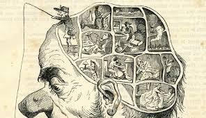 Autopsie Du Cerveau D Un P Cheur La Ligne L Air Du Temps De