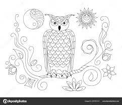 Kleurplaat Pagina Met Hand Getekende Patroon Uil Het Takje Yin