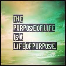 Quotes About The Purpose Of Life Impressive Purpose Of Life Quotes Wonderful Purpose Of Life Quotes 48 Life