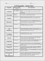 Function Chart Worksheet Cell Organelle Chart Answer Key Bedowntowndaytona Com