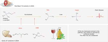 The Unmapped Chemical Complexity Of Our Diet Nature Food