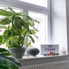 Dekoideen Wohnzimmer Fensterbank