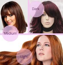 Cinnamon Hair Color Chart Cinnamon Hair Color Dark Medium Light Shades Chart