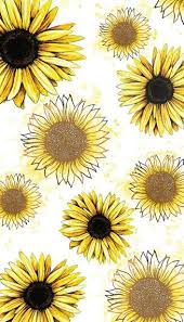 sunflower obsession the creative soul sunflowers wallpaper and phone