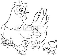 Small Picture Coloring Page Of Mother Hen With Its Baby Chicks Royalty Free