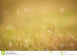 simple nature background. Delighful Background Natural Background Throughout Simple Nature Background N