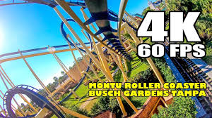 montu roller coaster front seat ride incredible 4k 60fps fooe busch gardens ta