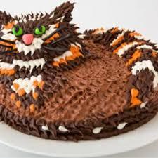 Cat Birthday Cake Design Parenting