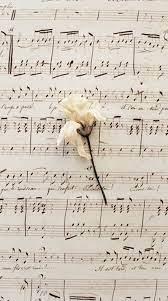 Orange Aesthetic Background Music Note ...