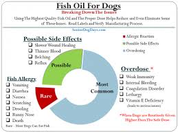 Fish Oil Dosage Chart For Adults Dog Fish Oil Overdose Vs Side Effects Plus The Critical