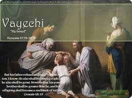 Image result for vayechi torah portion images