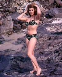 8X10 PUBLICITY PHOTO CC907 ACTRESS MICHELE CAREY PIN UP Collectables  Postcards