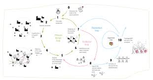 Design Thinking Playbook Stanford Design Thinking And New Business Ecosystems Nextrends