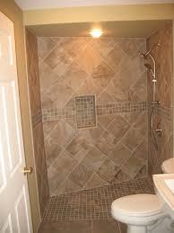 handicap accessible bathroom. handicap accessible shower traditional-bathroom bathroom