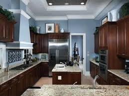What Color To Paint Kitchen With Dark Cabinets Unique Inspiration Ideas