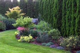 Small Picture Garden bed designs
