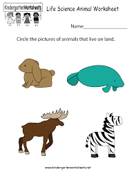 Free Kindergarten Science Worksheets - Learning the basics of science.Life Science Animal Worksheet