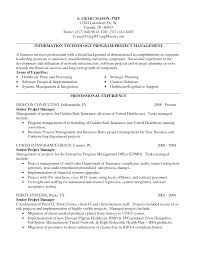 Project Manager Resume It Sample Pdf Qualit Sevte